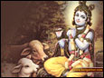 Krishna Kanhaiya  wallpaper